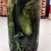 pickle3